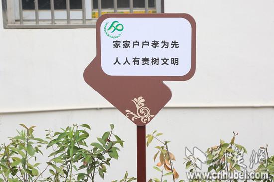 人口文化进校园手抄报_人口文化标语