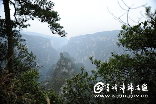 日前,《秭归县九龙寨风景区总体规划》通过专家评审.